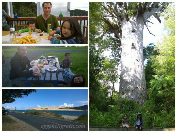 North Island trip collage 2